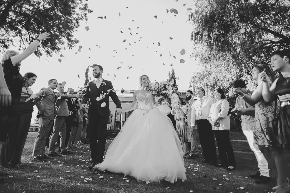 401 Rozendal wedding in Stellenbosch