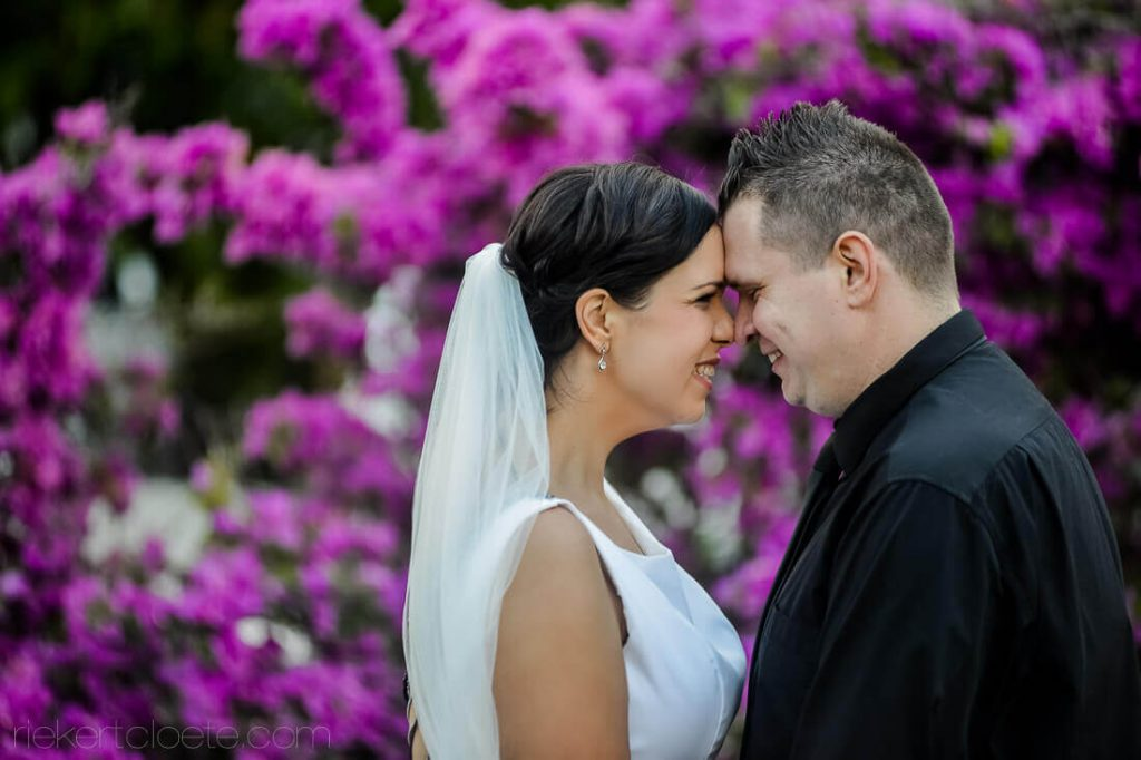 Pink flowers behind couple