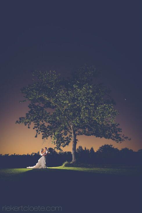 tree at Vrede en Lust at night