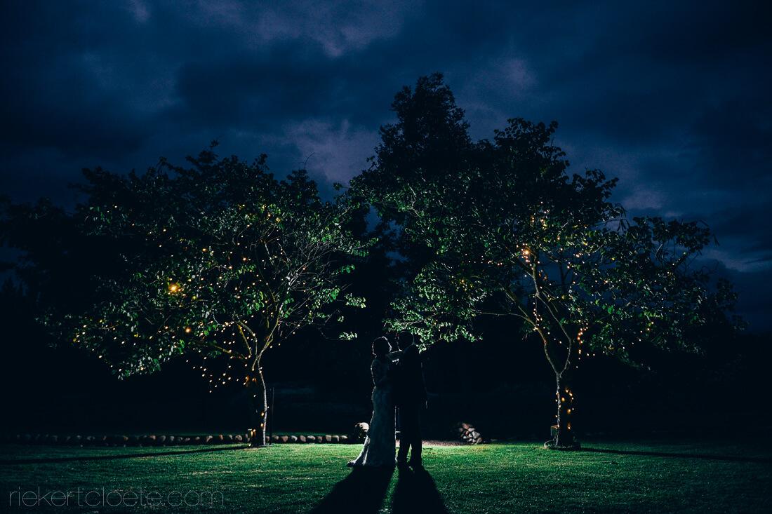 Trees at Hudsons
