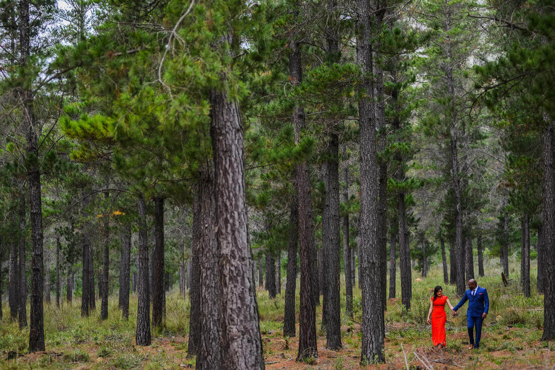Red dress in forrest
