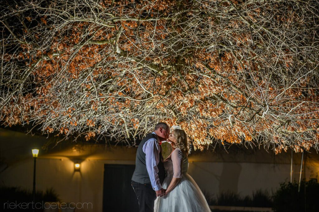 Tree behind couple at night
