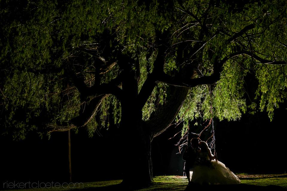 wedding couple under a tree