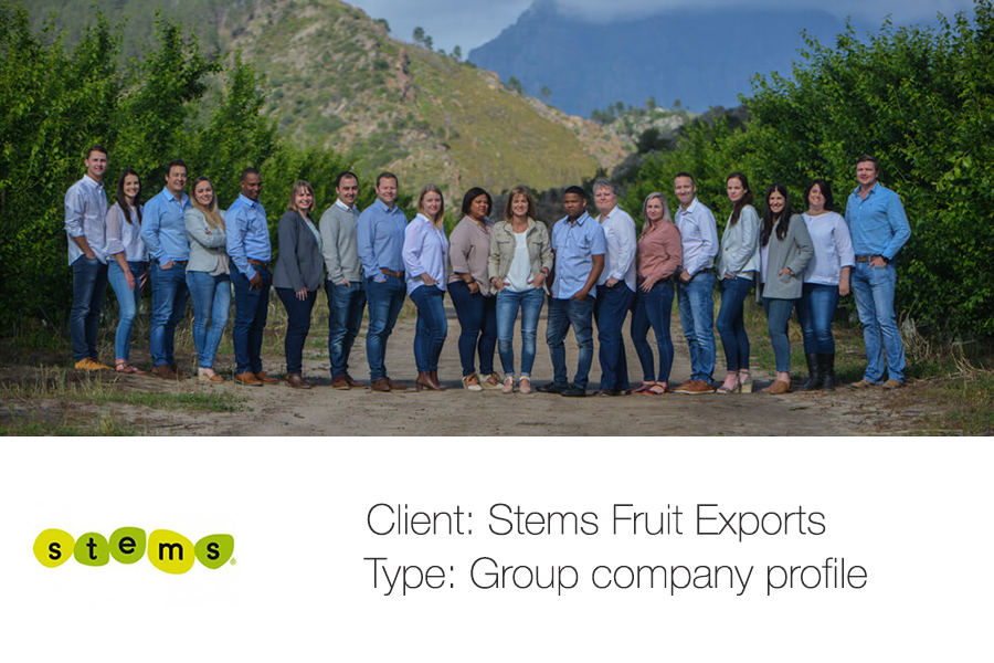 Groups shoots in the winelands